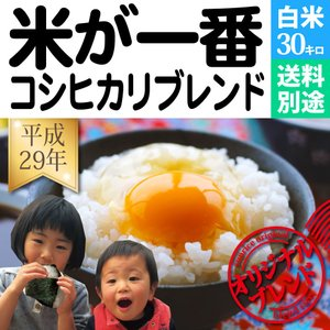 米 30kg お米 白米 コシヒカリブレンド 米が一番 安い...