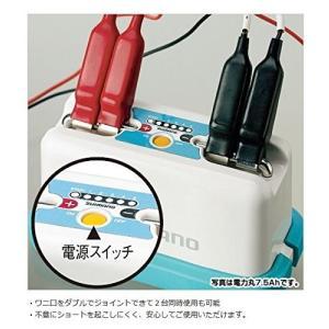 シマノ電力丸10Ah24718