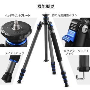 Tycka 三脚 カメラ三脚 カーボンファイバー製 超軽量 1.42kg 4段 全高1650mm 8kg耐荷重 デジタルカメラ 一眼レフカメ|sunrise-eternity