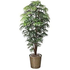 造花 観葉植物 「シュロチク 180cm」 光触媒(空気清浄) インテリアグリーン 鉢植え|sunrise-eternity