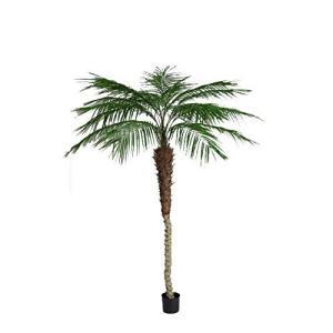 7FTフェニックスパームツリー/グリーン(FD3580G) フェニックス ヤシ パーム ツリー フェイクグリーン 人工観葉植物 造花|sunrise-eternity