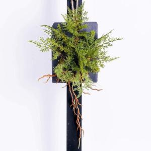 シダと多肉植物グリーン寄せ植え ウォールハンギング 枯れない花 人工観葉植物 壁面緑化 造花 フェイ...