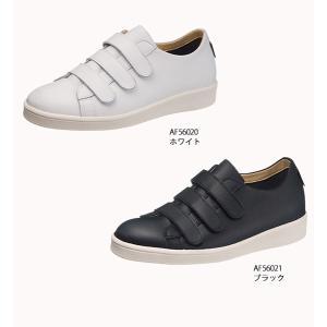 スニーカー  防水 撥水 トップドライ TDY56-02|sunrise-shoes