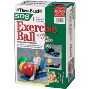 SDSエクササイズボール SDS-55|sunward