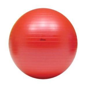 ボディーボール 55cm (レッド) アンチバーストタイプ  トーエイライト  H-7261 エクササイズボール sunward