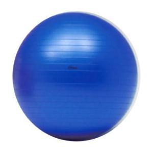ボディーボール 65cm (ブルー) アンチバーストタイプ  トーエイライト  H-7262 エクササイズボール sunward