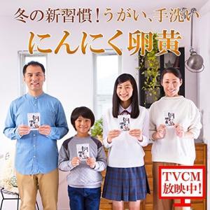 健康家族 伝統にんにく卵黄 31粒 送料無料|sup-s|02