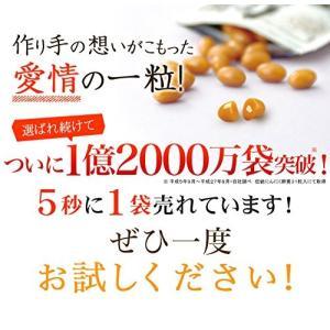 健康家族 伝統にんにく卵黄 31粒 送料無料|sup-s|03