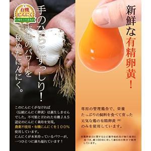 健康家族 伝統にんにく卵黄 31粒 送料無料|sup-s|04