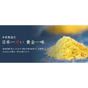 京都祇園 黄金一味 13g(瓶) 【送料無料】|sup-s|03
