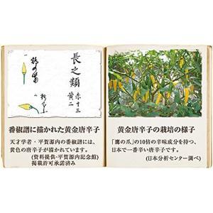 京都祇園 黄金一味 13g(瓶) 【送料無料】|sup-s|04