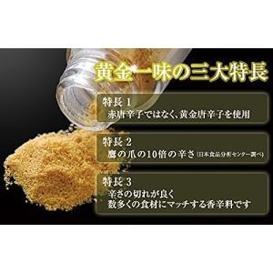 京都祇園 黄金一味 13g(瓶) 【送料無料】|sup-s|05