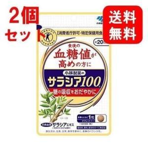 2個セット 定番 小林製薬のサラシア100 食...の関連商品5