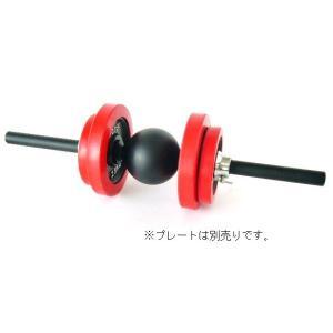IROTEC(アイロテック)ボールグリップダンベル/トレーニング器具 ベンチプレス 筋トレグッズ バーベルプレート 筋トレ 器具|super-sports