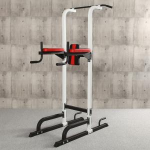 IROTEC (アイロテック)チン&ディップスタンド 懸垂 腹筋 筋トレグッズ 筋トレ 器具 ぶら下がり健康器 健康器具 ダンベル