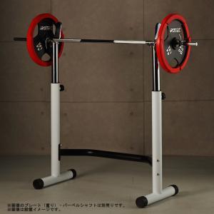 IROTEC(アイロテック)スクワットラック /ダンベル・ベンチプレス・トレーニング器具・筋トレ・トレーニングマシン・バーベル