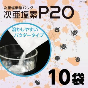次亜塩素酸 パウダー 次亜塩素P20(10包入り×1パック) 消臭 除菌 ウイルス 風邪 予防 オフィス 学校 会社 病院 子供 施設 送料無料|supereagle