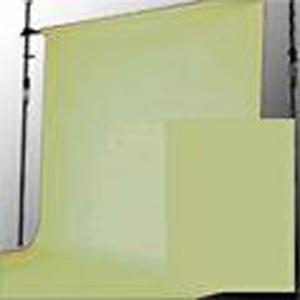 BPS-1305 スーペリア背景紙 1.35x5.5m #13トロピカルグリーン superior