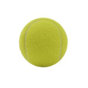 エックスティーエス(XTS) 硬式用テニスボール ノンプレッシャー 738G9ZK3701 YEL