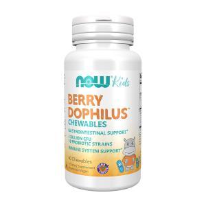 ナウフーズ ベリー ドフィラス 子供用 60チュアブル錠 Now Foods Berry Dophilus Kids 60 Chewables|supla