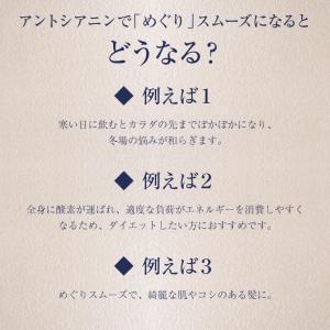 黒豆茶 30包500円 お試しワンコイン ポイント消化 PP|suppleherb|05