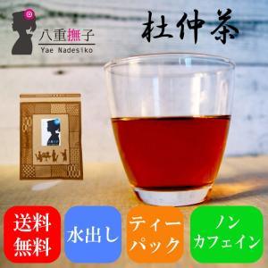 杜仲茶(とちゅう/トチュウ)30包700円 送料無料 お試し ポイント消化