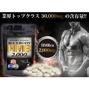 MAX BODY HMB エイチエムビー HMBを2000mg配合!1袋に業界トップクラス さらにBCAA配合 supplement-cafe 03