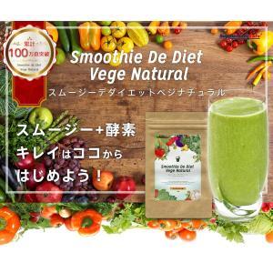 グリーンスムージー 2個セット 352種類の 酵素MIX スムージー デ ダイエット ベジナチュラル ミネラル 酵素 グリーン|supplement-cafe|02