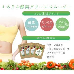グリーンスムージー 2個セット 352種類の 酵素MIX スムージー デ ダイエット ベジナチュラル ミネラル 酵素 グリーン|supplement-cafe|03
