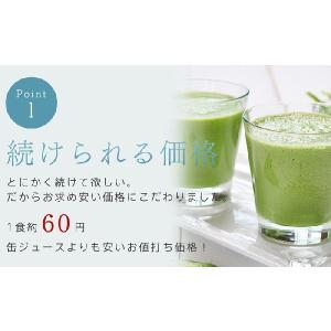 グリーンスムージー 2個セット 352種類の 酵素MIX スムージー デ ダイエット ベジナチュラル ミネラル 酵素 グリーン|supplement-cafe|05