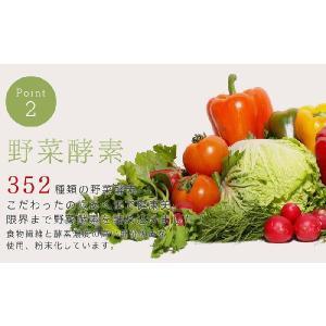 グリーンスムージー 2個セット 352種類の 酵素MIX スムージー デ ダイエット ベジナチュラル ミネラル 酵素 グリーン|supplement-cafe|06