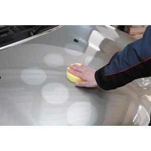 ワックス 車 SurLuster シュアラスター ワックスビギナーセット カーワックス シャンプー 洗車 T-33 公式通販 sur 04