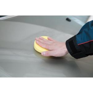 ワックス 車 SurLuster シュアラスター ワックスビギナーセット カーワックス シャンプー 洗車 T-33 公式通販 sur 05