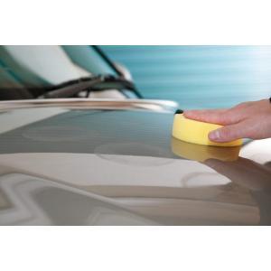 ワックス 車 SurLuster シュアラスター ワックスビギナーセット カーワックス シャンプー 洗車 T-33 公式通販 sur 06