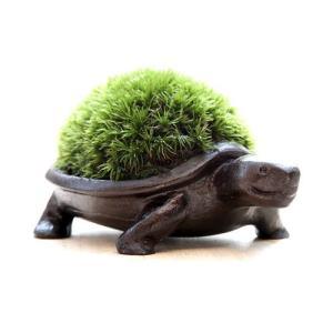 苔盆栽 かめ ブロンズ製|surouweb