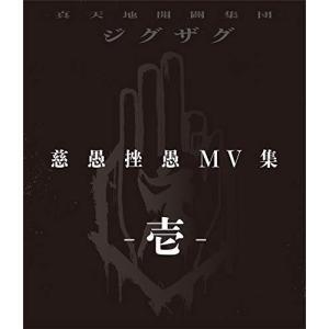 BD/-真天地開闢集団-ジグザグ/慈愚挫愚 MV集 -壱-(Blu-ray)|surprise-flower
