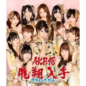 CD/AKB48/フライングゲット (CD+DVD) (通常盤Type-B)