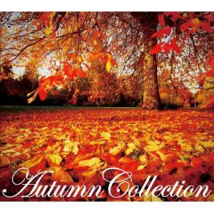 CD/オムニバス/Autumn Collection サプライズweb