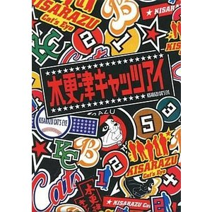中古国内TVドラマDVD 木更津キャッツアイ DVD-BOX