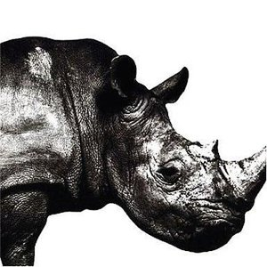 中古邦楽CD Mr.Children / Mr.Children 1992-1995|suruga-ya