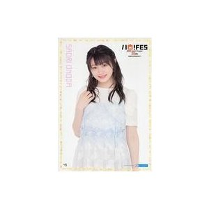 817924-A 商品解説■「Hello! Project 20th Anniversary!! H...