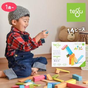 tegu テグ 磁石入り 積み木 マグネット ブロック 14ピース/ティント 知育玩具  孫 子供 プレゼント ギフト おもちゃ おしゃれ 誕生日 1歳 2歳 3歳|susabi