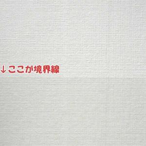 壁紙をキズ汚れから保護するシート 46cm×20m HKH-01RS(ガーデニング・花・植物・DIY) suteki-roseyrose