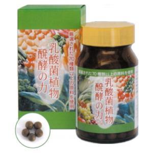 乳酸菌植物醗酵の力 30g(250mg×約120粒) sutekihiroba