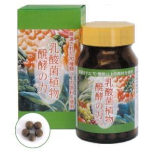 送料無料!  乳酸菌植物醗酵の力 3個セット 30g(250mg×約120粒)×3個 sutekihiroba