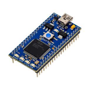 ARM mbed NXP LPC1768 開発ボード suzakulab