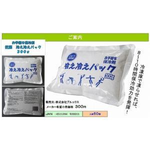 熱中症 対策 激安 アウトドア キャンプ 保冷剤 抗菌 冷え冷えパック (300g) お花見 運動会 バーベキューに|suzion-line