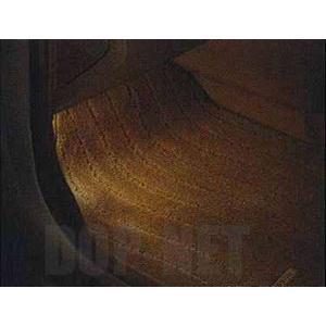 フットウェルランプ(白色発光) HPDB0 ノート E11 日産