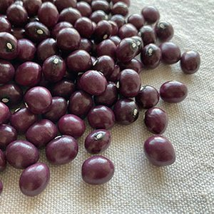 さくら豆 200g 2020年 北海道産