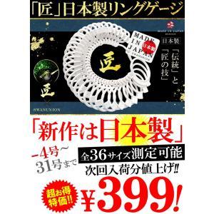 日本製 リングゲージ マイナス4号〜31号まで 全36サイズ 日本標準規格 サイズゲージ 指輪 メンズ レディース sg8 swan-hoseki 07